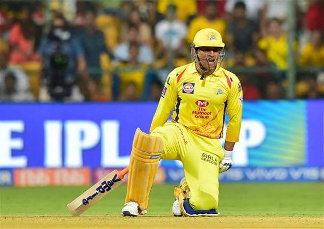 CSK won first match of IPL 2020 by 5 wickets