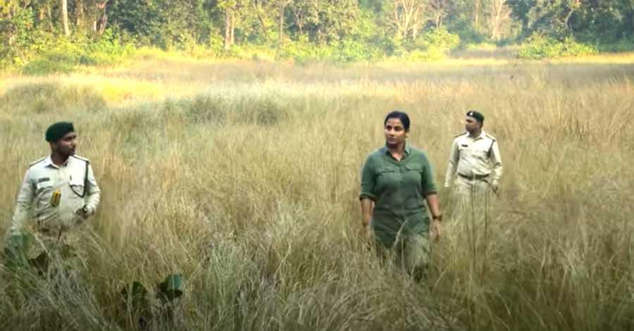 Vidya Balan starrer Sherni will be roaring on Amazon Prime soon